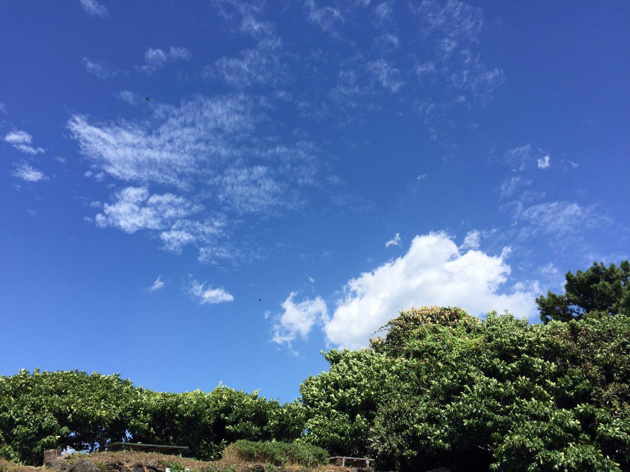 photo_2016-08-30_15-41-29.jpg