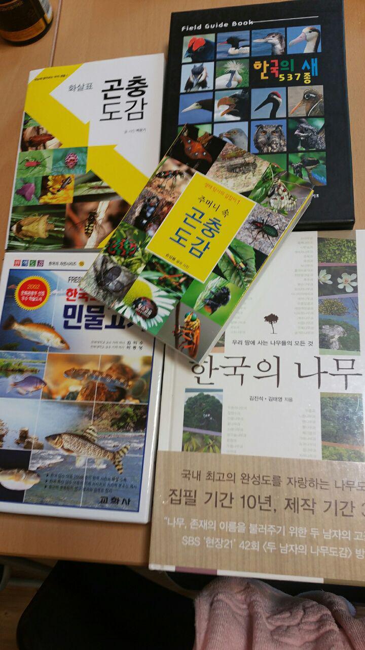 photo_2016-09-08_14-11-12.jpg