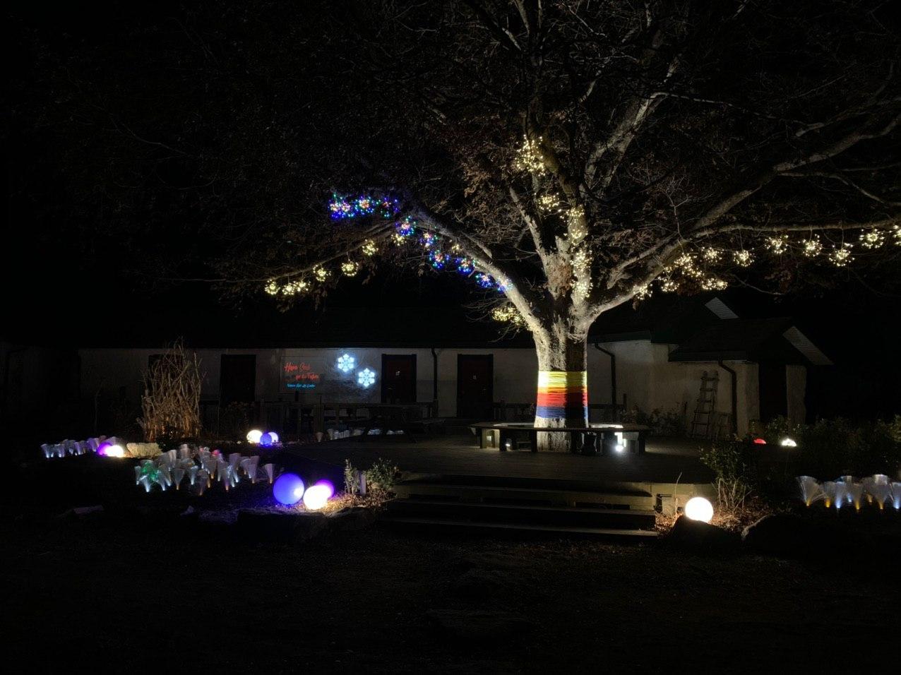 photo_2020-02-02_14-49-29 내일나무.jpg