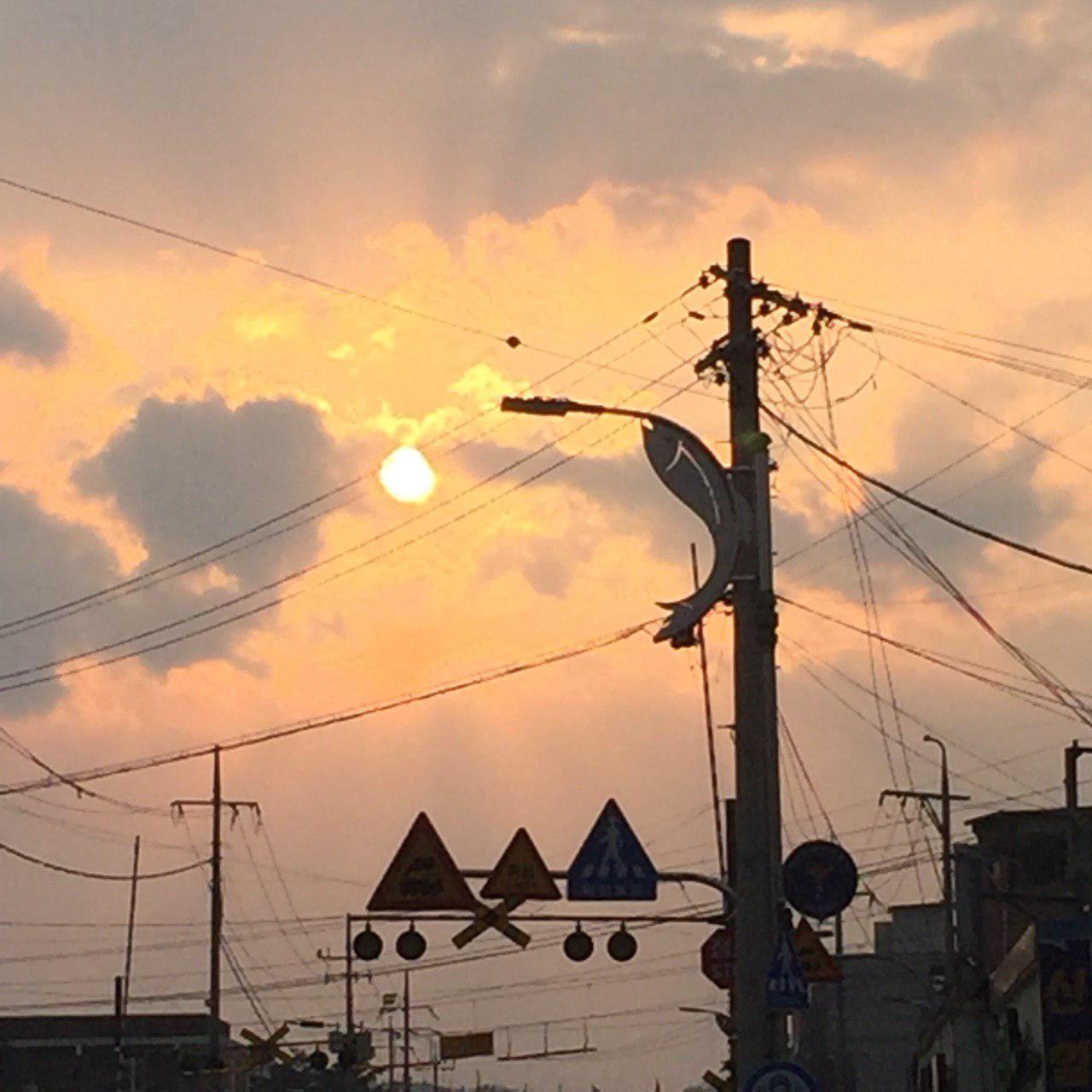 photo_2019-04-01_14-07-10.jpg