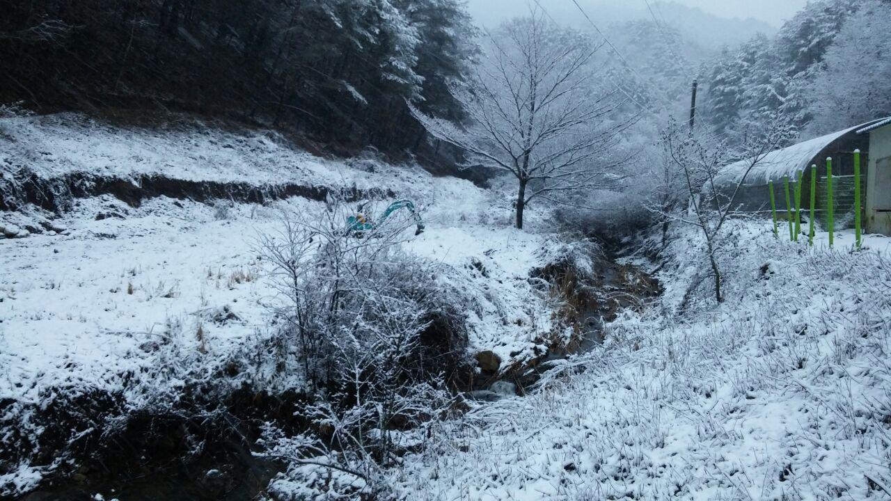 photo_2016-12-28_20-29-24.jpg