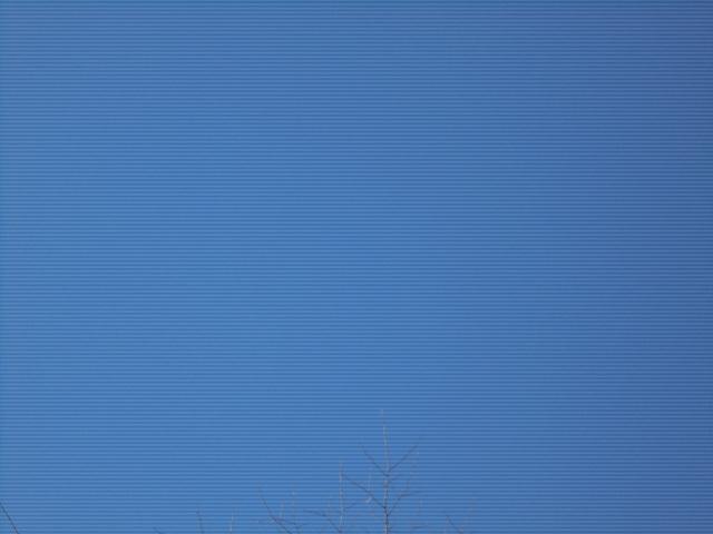 북극성 (2).jpg