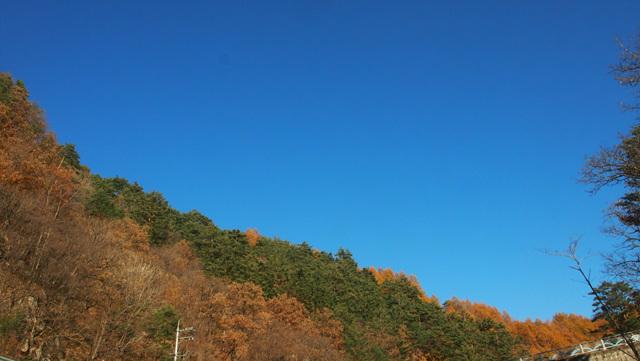 하얀하늘 (1).jpg