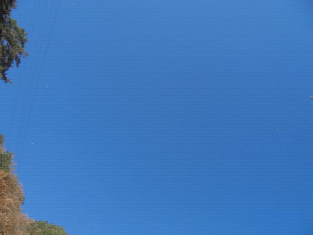 별 (2).jpg