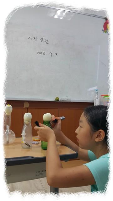 달걀사전실험 (7).jpg
