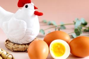 내일학교 달걀 (20개)